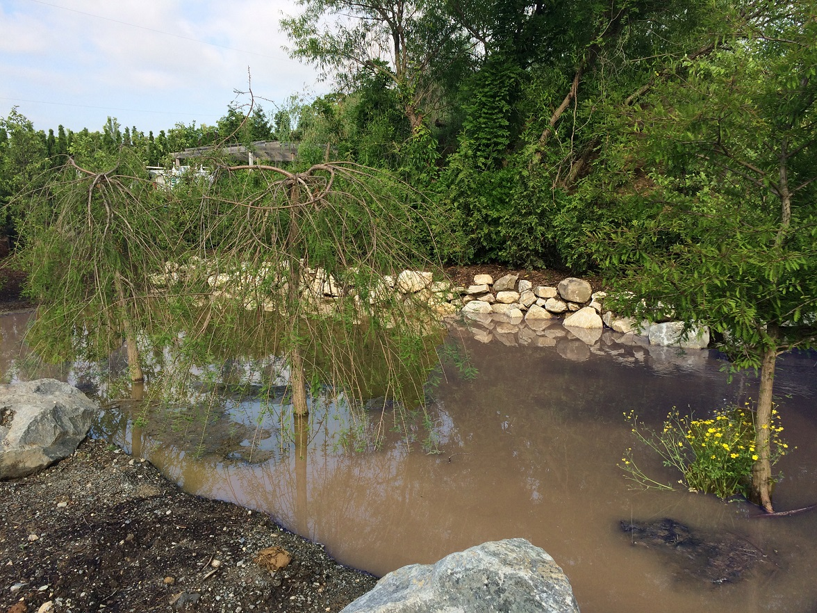 Storm Water Management  McHale Landscape