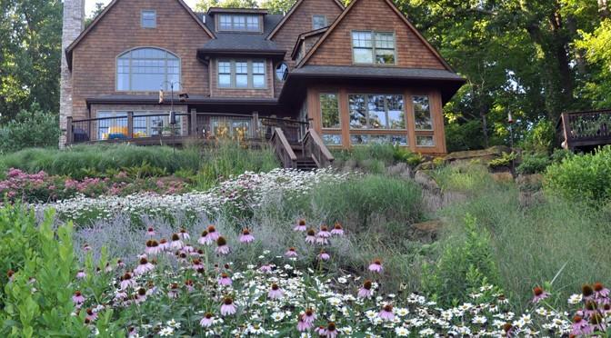 6 Ways Native Plantings in DMV Reduce Landscape Maintenance